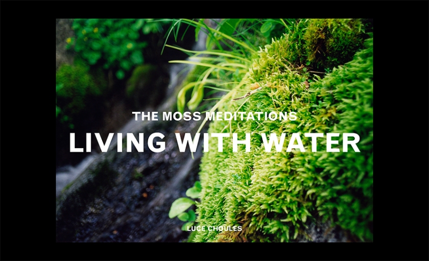 CHOULES Living with Water proposition